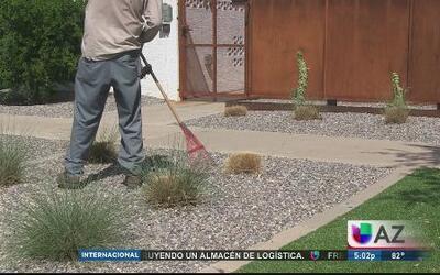 El jardinero decapitado estaba entrenado