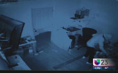 Cámara de seguridad capta el robo de productos electrónicos