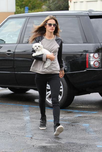 Esta semana, los fuertes vientos invernales obligaron a las celebridades...