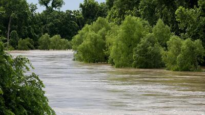 Texas libre de sequía por primera vez en cinco años Texas_Lluvias.jpg