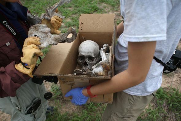El equipo de antropólogos primero ha tenido que recolectar los restos hu...