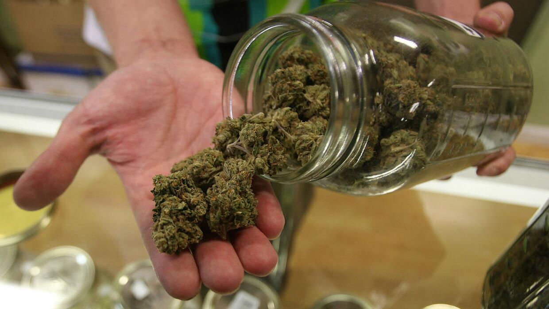 Academia Americana de Pediatría se opone al suministro de marihuana medi...