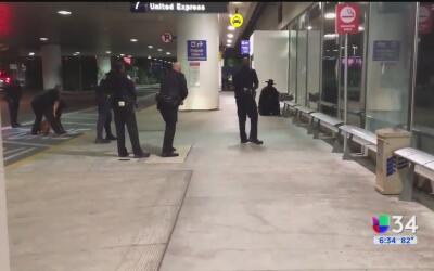 Hombre disfrazado de zorro causó pánico en el aeropuerto de Los Ángeles