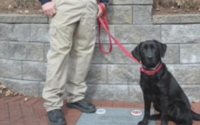 El Departamento de Bomberos de Conroe tiene un nuevo miembro canino en e...