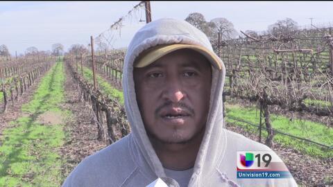 Bajas temperaturas afectan a trabajadores del campo