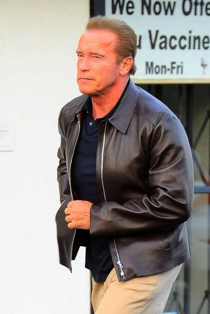 Como coincidencia, unos días atrás, vimos a Arnold Schwarz...
