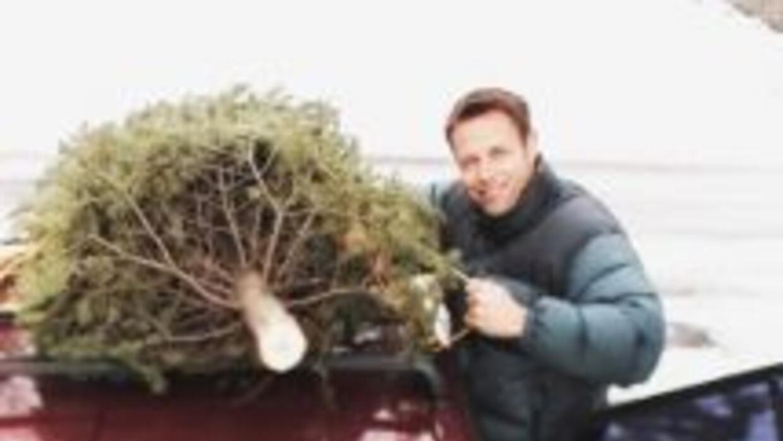 Árbol Navidad reciclaje