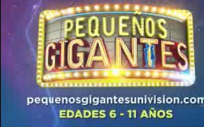 Mañana viernes 4 de noviembre serán las audiciones en San Antonio de Peq...