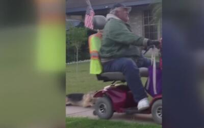 Hombre es arrestado por atar a su perro a una silla de ruedas y arrastra...