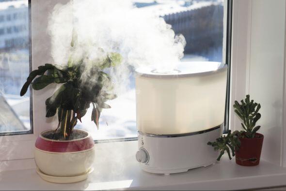 Sí a la humedad. Si el aire en tu dormitorio está muy seco, un humidific...