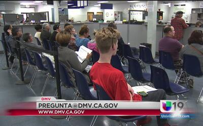 Licencias para todos: ¿Cómo puedo informarle mi nueva dirección al DMV?