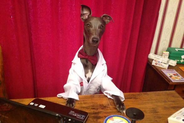 Tal vez un día requieras una cita al médico. El doctor Rupert se encuent...
