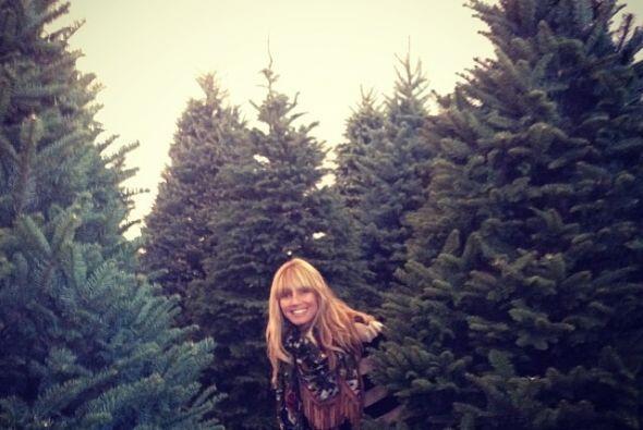 Heidi Klum se divirtió mucho escogiendo el árbol para su casa.