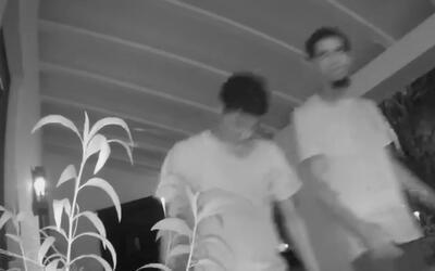 Buscan a cinco presuntos ladrones por el robo de vehículos en Miami Beach