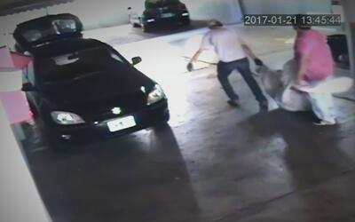 En video, el momento en que unos asesinos tratan de llevarse el cuerpo d...