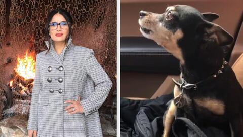 Salma Hayek brillando más que nunca y la tierna Lola del Castillo le tie...