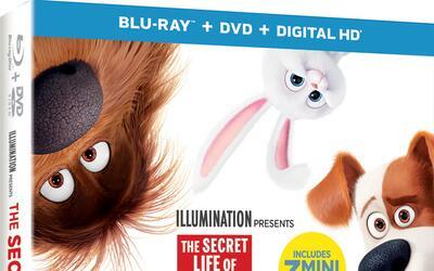 En Digital HD el 22 de noviembre. 4K ULTRA HD™, BLU-RAY™ 3D, BLU-RAY™, D...