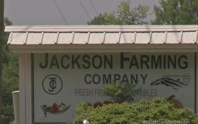 Trabajadores inmigrantes acusan al senador Brent Jackson