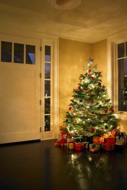 A todos nos encantan las coloridas luces de Navidad que llenan todos los...