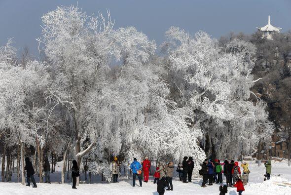 Miles de personas asisten cada año a observar las imponentes figu...
