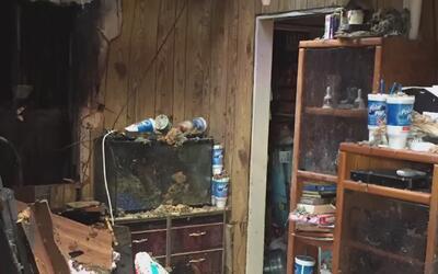 Acumular grandes cantidades de cosas en casa podría ser de peligro en ca...
