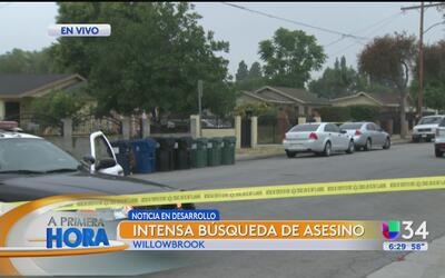 Mortal disputa entre hermanos en Willowbrook