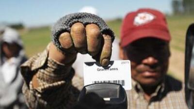 Miles de trabajadores agrícolas en Estados Unidos aguardan una oportunid...