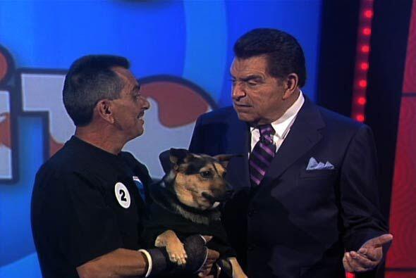 """En el concurso """"Igualito a mi Perrito"""" de Sábado Gigante han pasado cosa..."""