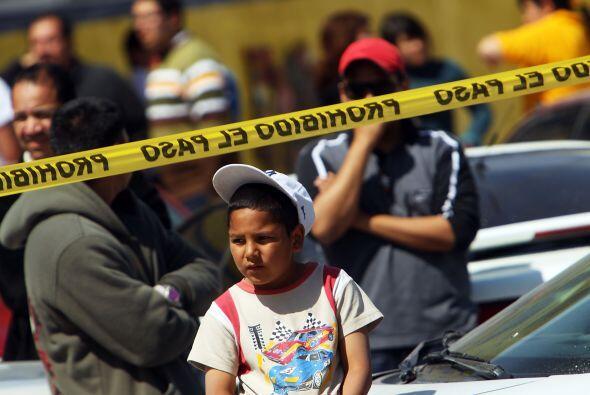 Organizaciones civiles citadas por Excélsior detallan que en promedio, 8...