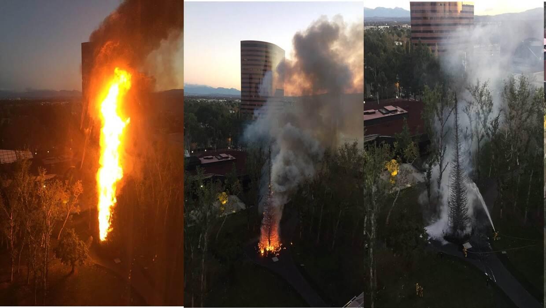 Arde un árbol de Navidad en Costa Mesa por razones que se investigan