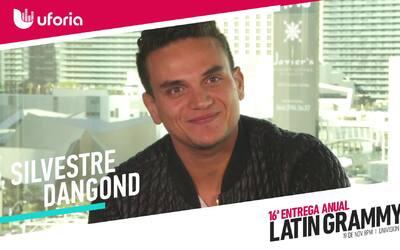 """Silvestre Dangond: """"La felicidad perfecta no existe"""""""