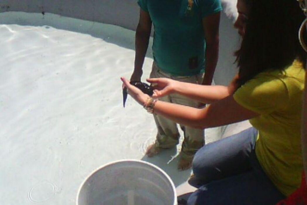 Acompaña a Pilar Preza durante su visita a Xochimilco, México, y conoce...