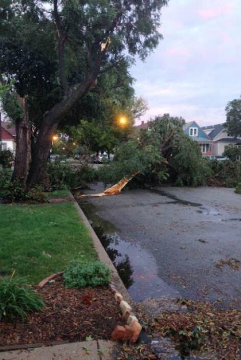Derrumbes por repentina tormenta