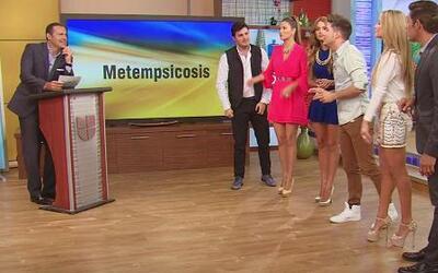 Adivina el significado de la palabra Metempsicosis