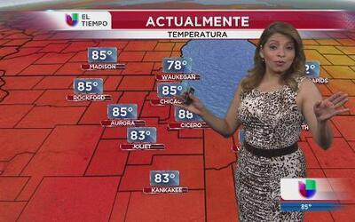 Continúan agradables las temperaturas en la zona de Chicago