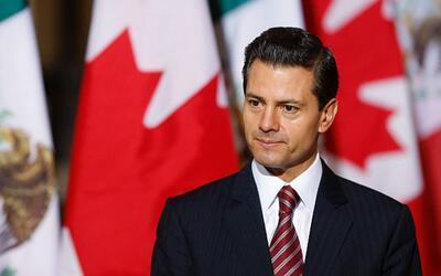 """Peña Nieto sobre los maestros en Oaxaca: """"no estamos enfrentándolos, est..."""