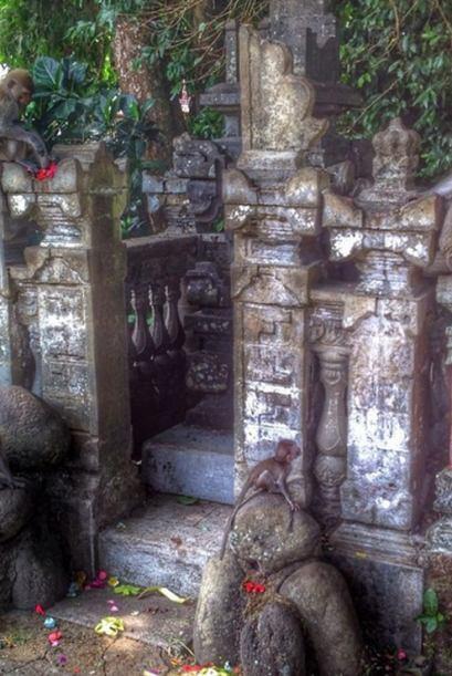 Llegando al famoso Monkey Forest con su Santuario de los Monos en Ubud,...