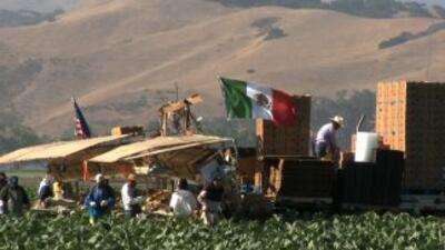 Los trabajadores agrícolas de un pueblo en California están enfrentados.