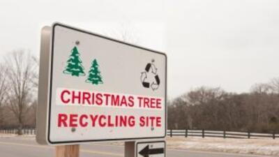 Este año puedes reciclar tu árbol de Navidad para que sea convertido en...