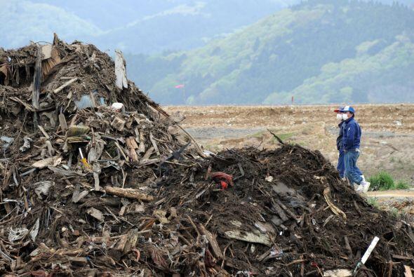 Las víctimas del terremoto y tsunami de Japón aún e...