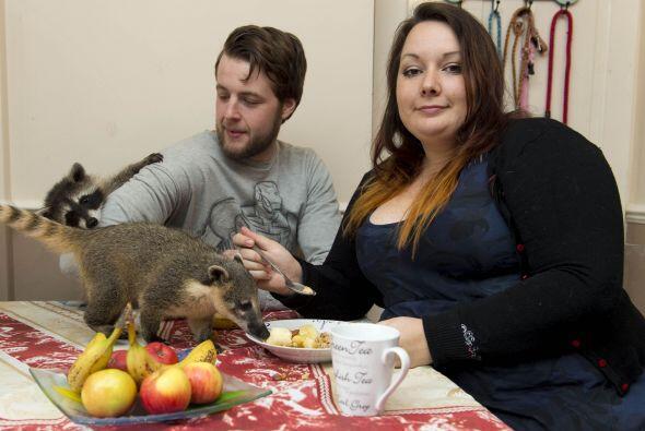 A pesar de vivir con una gran cantidad de animales dentro de casa, Jorda...