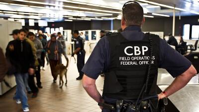 Ambas fueron encontradas en el aeropuerto internacional Luis Muñoz Marín...