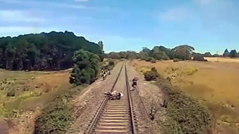 Un segundo más y este motociclista habría sido arrollado por un tren en...
