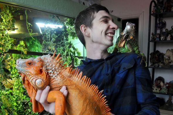 El hombre trabaja con varios veterinarios en Cheshire, ¡con ellos...