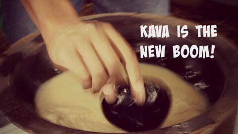 Bebida hecha a base de raíz de kava.