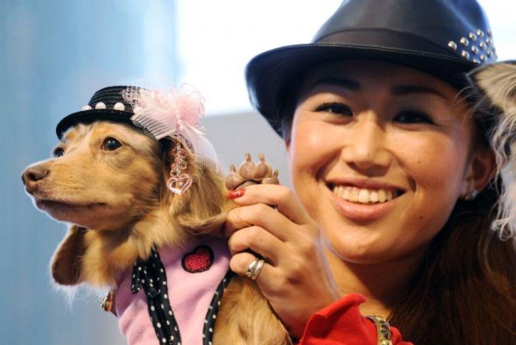 Los perros acompañados de sus dueños desfilaron en Japón.