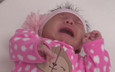 ¿Cuáles son las etapas del primer año de un bebé?