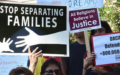 Durante el gobierno de Trump se ha deportado a 43 jóvenes que perdieron...
