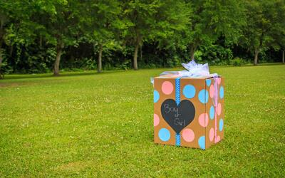 The ultimate baby reveal guide