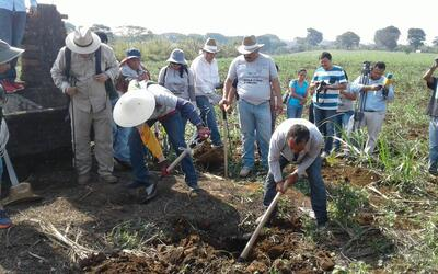El trabajo de campo de la Brigada en Veracruz, México.
